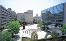 聖徳大学・聖徳大学短期大学部