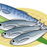【文学・歴史】「魚の歳時記」~日本人と魚の歴史と未来~(環境講座)